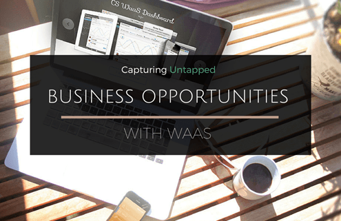 Business Opportunities with WaaS
